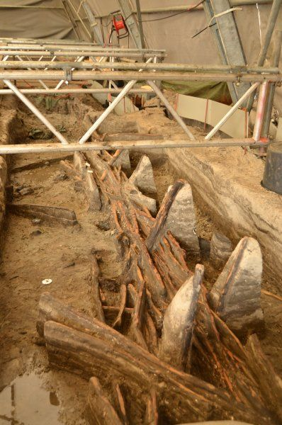 Stone Age Fish Trap Excavated On The Isle Of Lolland In Denmark Archaeological Finds Archaeology Stone Age