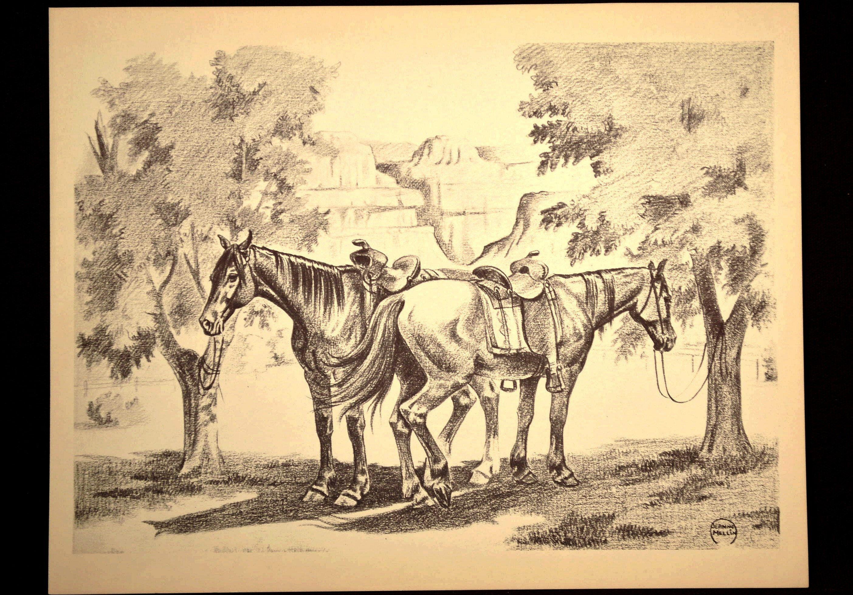 Horse Print Horse Wall Art Wall Decor Grand Canyon Print | Wall ...