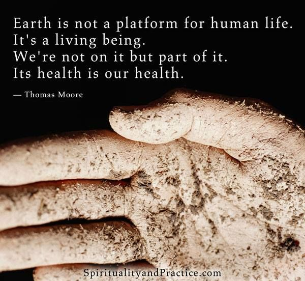 Our Earth is a living entity and we are all a part of it...Time to start taking care of it...
