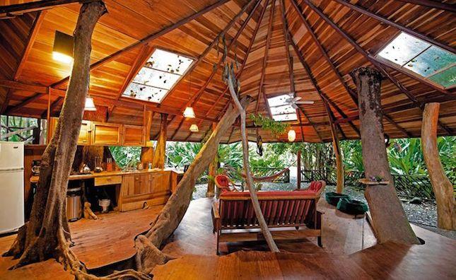 luxury tree house resort. Stay In A Tree House Costa Rica. Luxury Resort