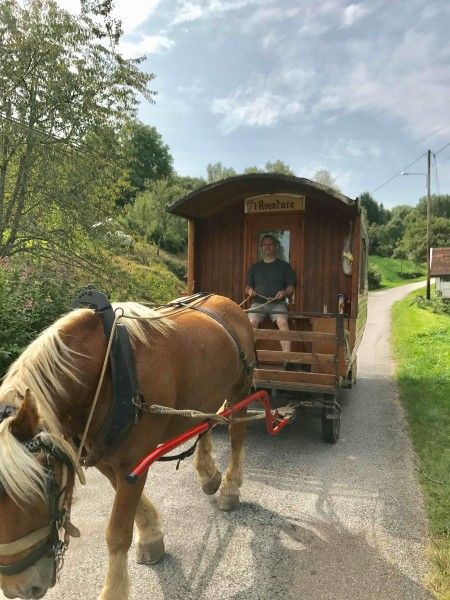 Planwagen-Urlaub: Zigeunerwagen-Ferien Frankreich (Vogesen ...