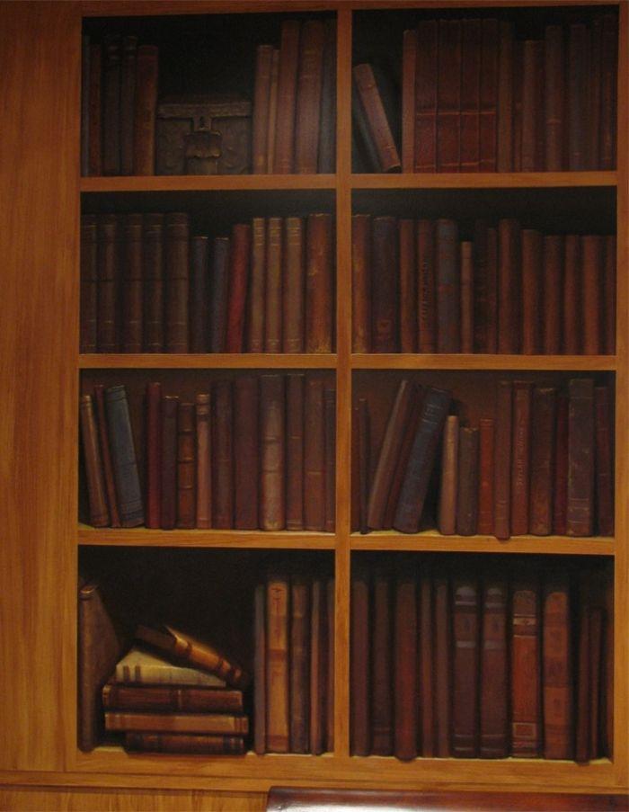 Bookshelves Mural mural idea as seen on wwwfindamuralist - peinture porte et fenetre