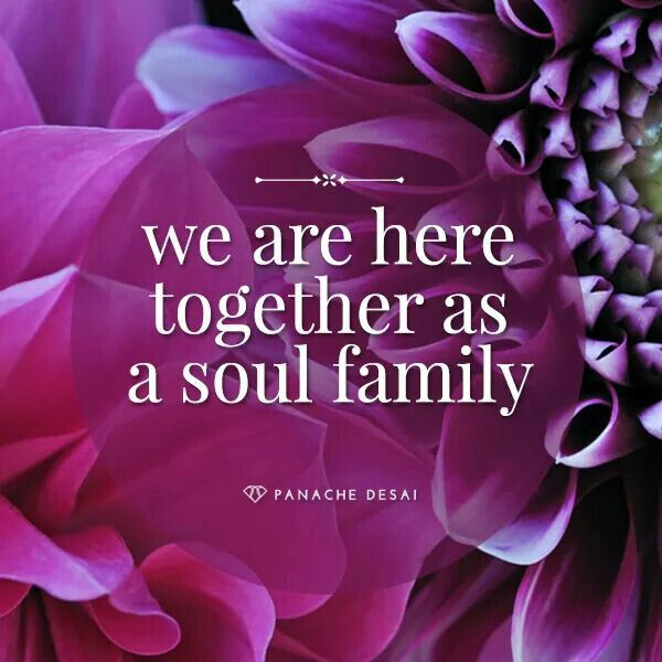Image result for soul family quotes