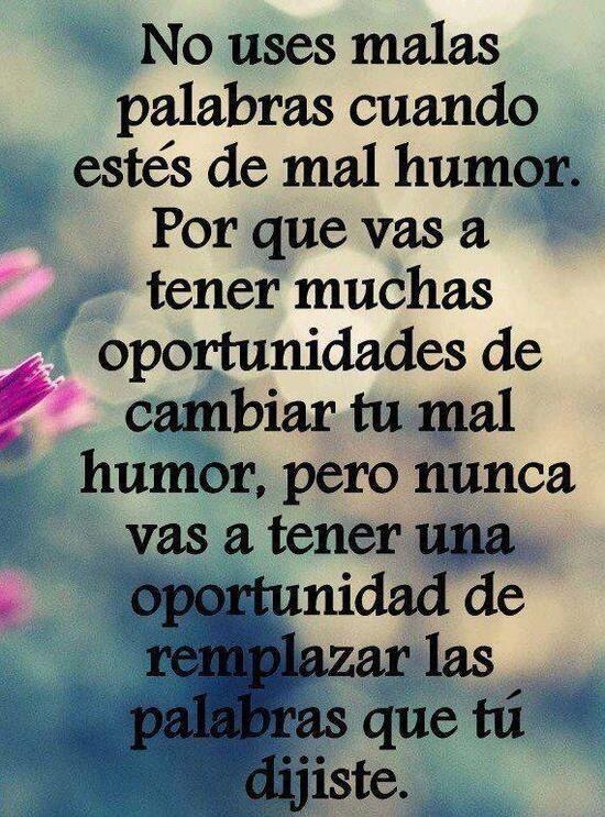 Frases, palabras, vida,español , humor, oportunidades
