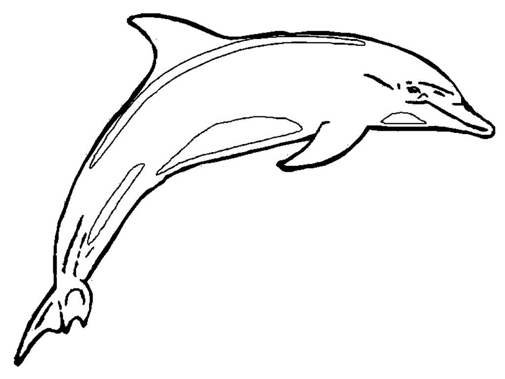 Free Printable Dolphin Coloring Pages For Kids | Free printable ...