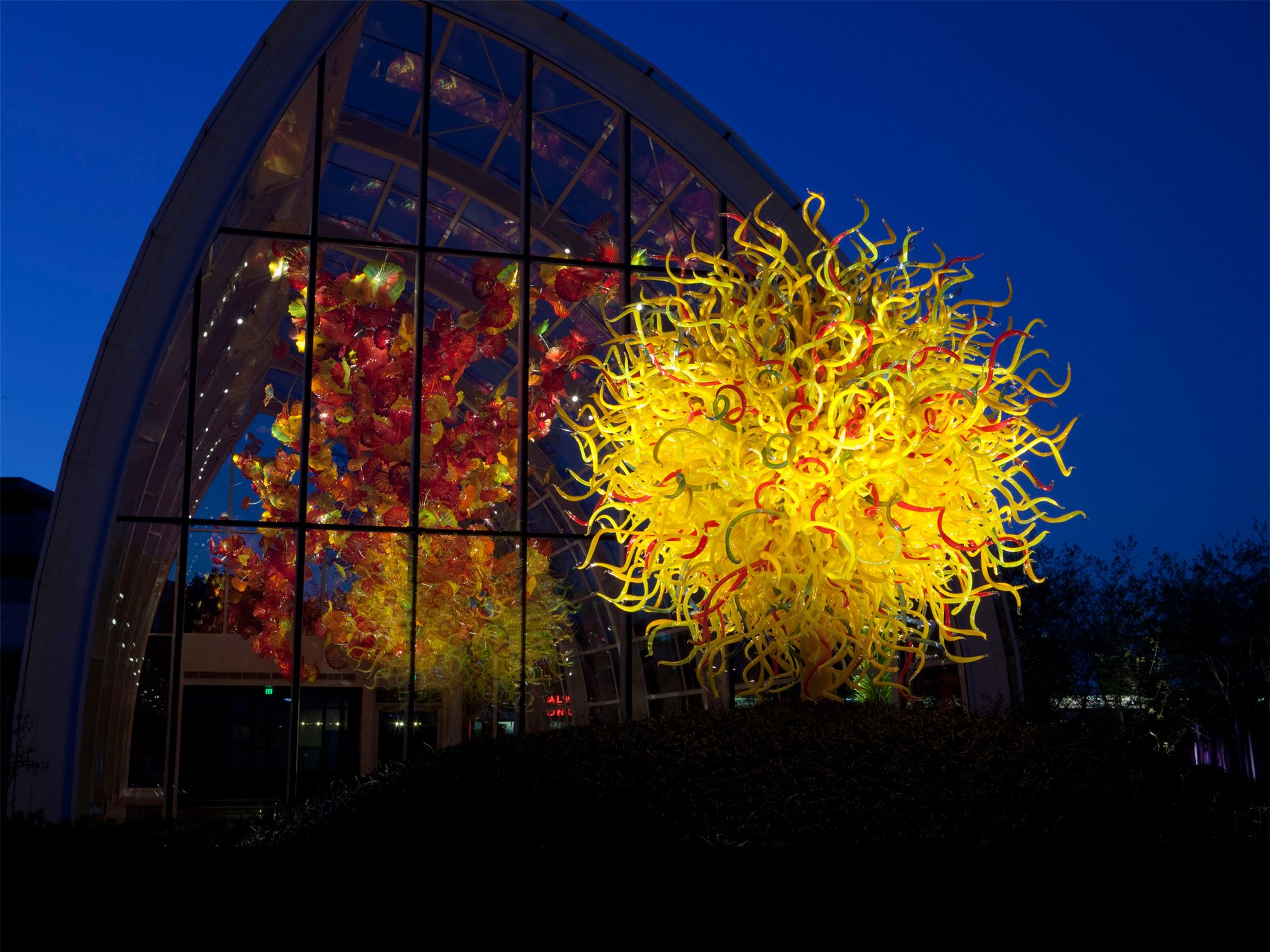 Chihuly Garden And Glass Museum View Artwork Of Dale