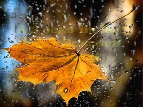 Deszcz Jesienny Leopold Staff Wiersz Autumn Rain I