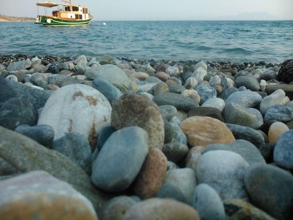 Photo by Sinan Işık. Mazı - BODRUM