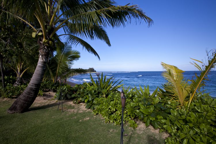 Banana Beach House Yard Kauai