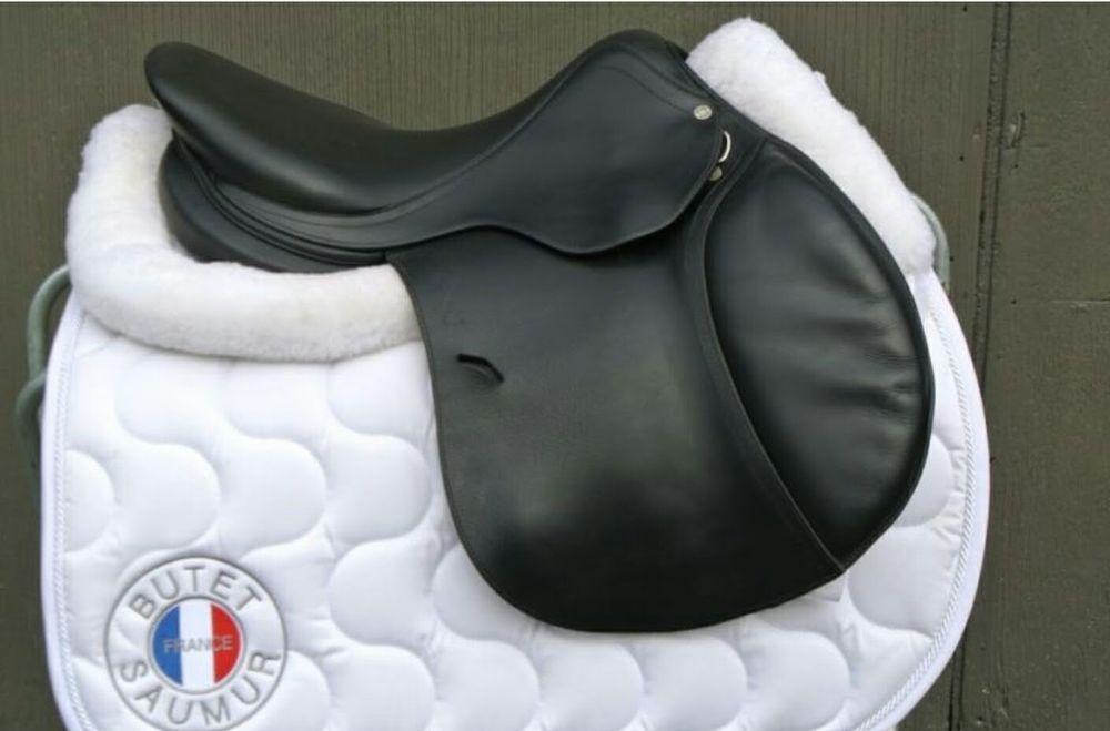 "17"" Antares Jump Saddle  #Antars"