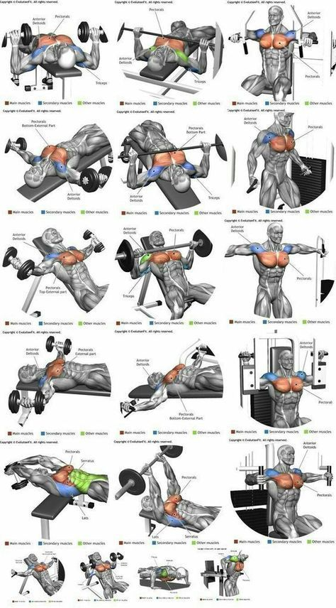 how to build up chest muscle at home