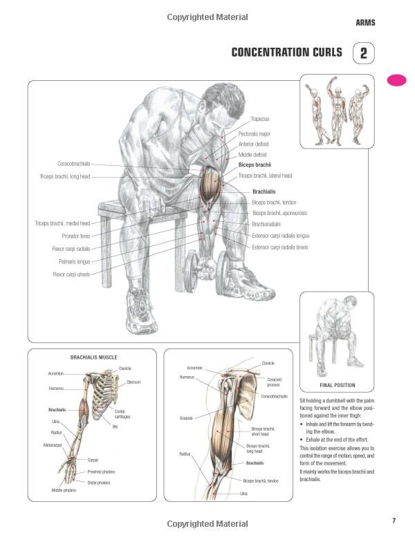 Strength Training Anatomy-3rd Edition: | Work outs | Pinterest ...