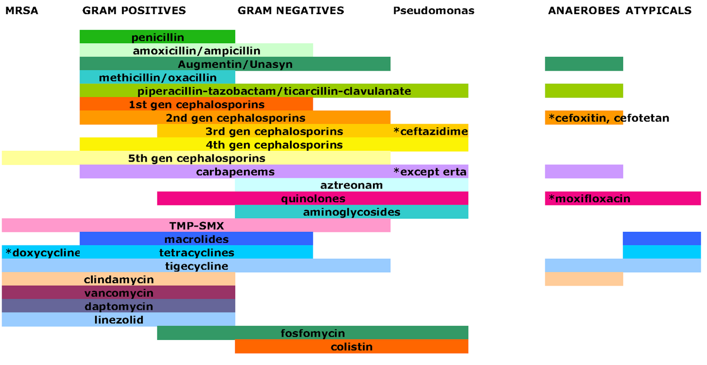 Antimicrobial Spectrum Of Activity Chart Sanford Guide