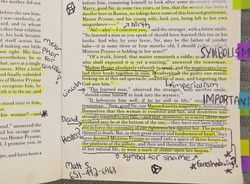 Copy Of 'The Scarlet Letter' Can't Believe The Notes High Schooler