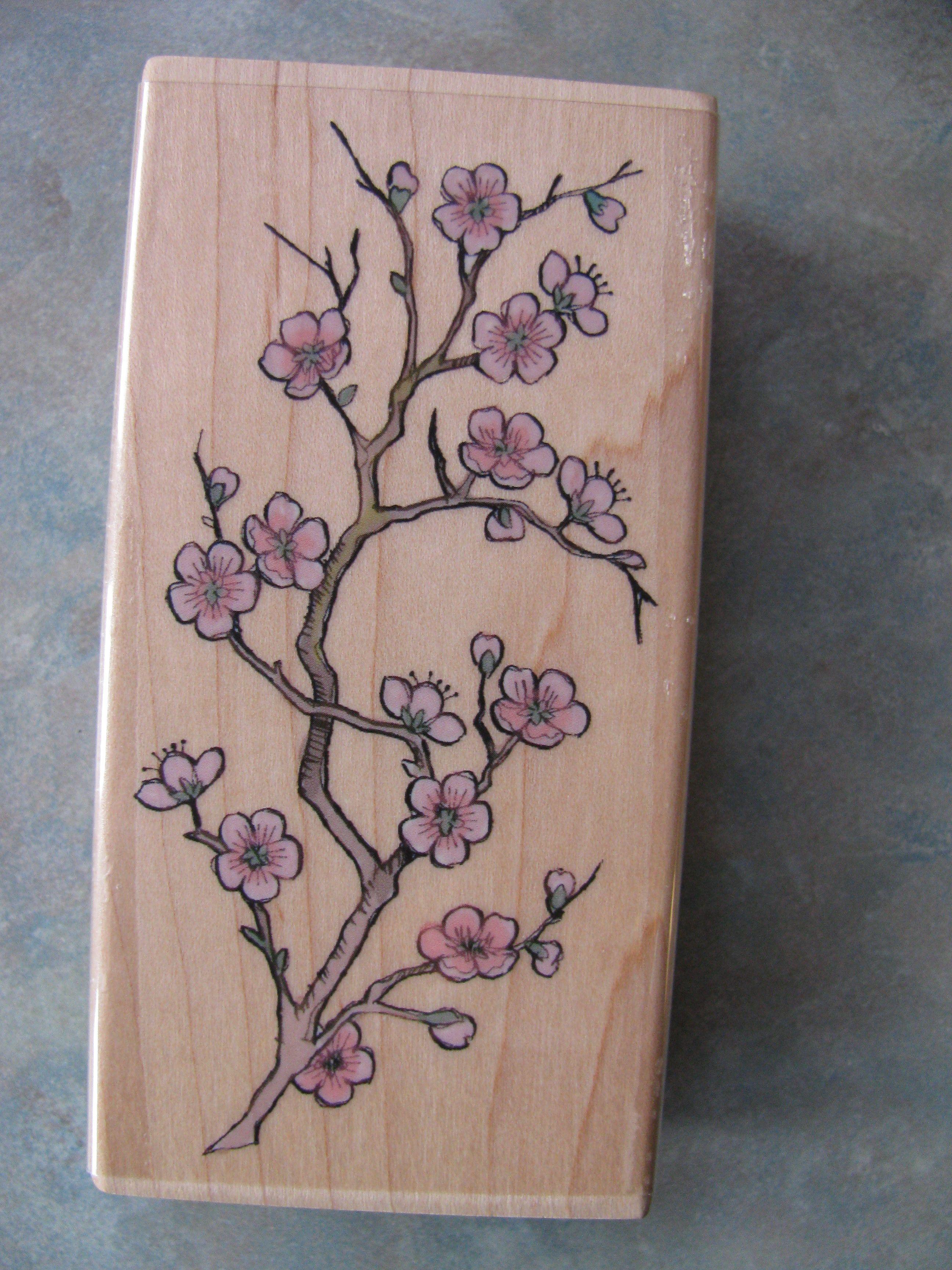 44 cherry blossom flower