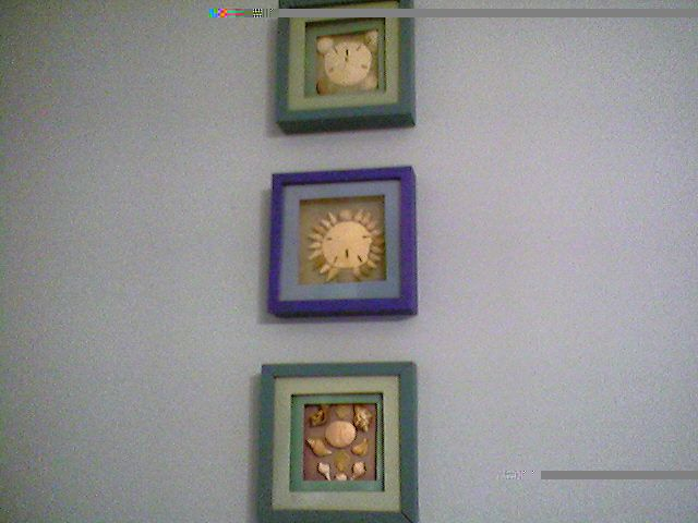 shadow boxes I made with shells found at Sandbridge Beach, VA