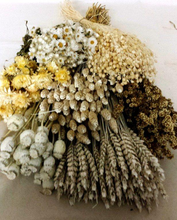 flores secas - Pesquisa Google Arreglos Florales Pinterest - flores secas