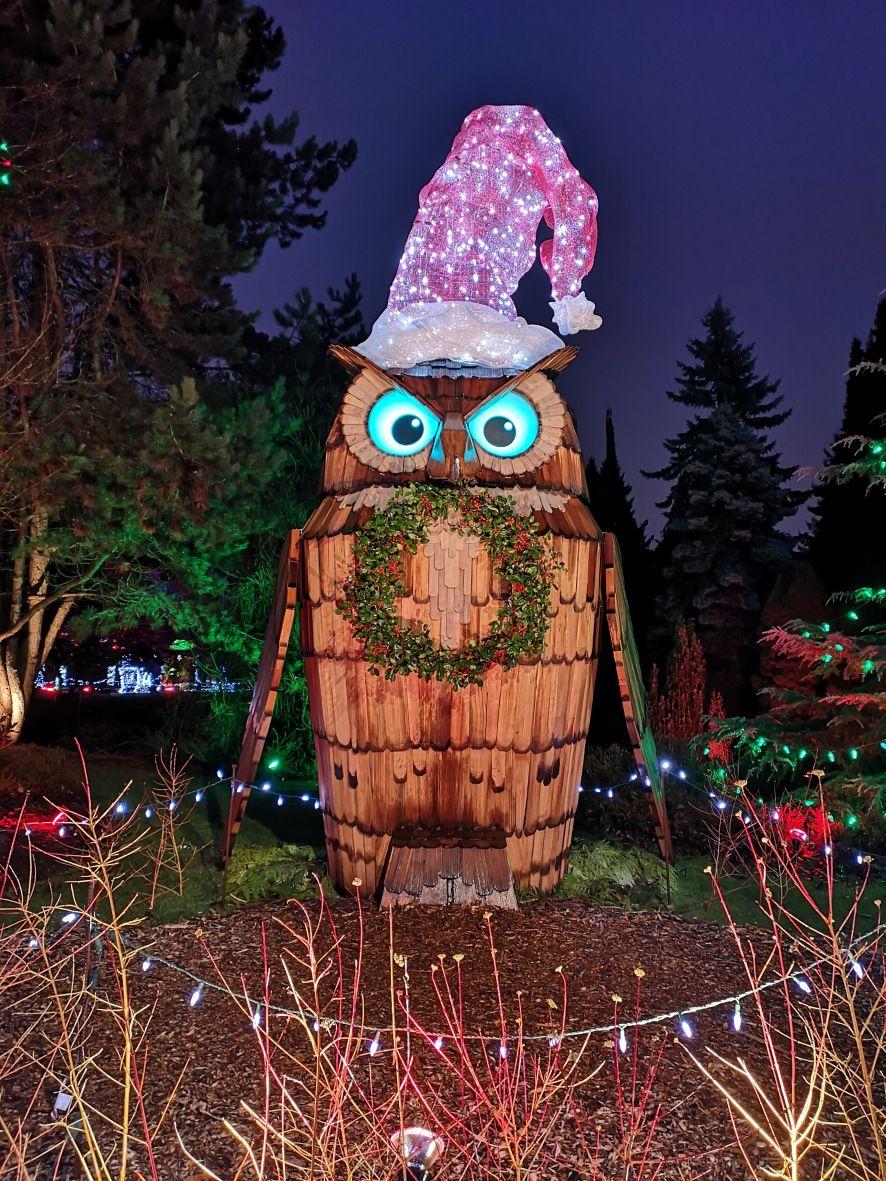 255a52b58dd894274c675efb8ab6b86f - Van Dusen Botanical Gardens Christmas Lights