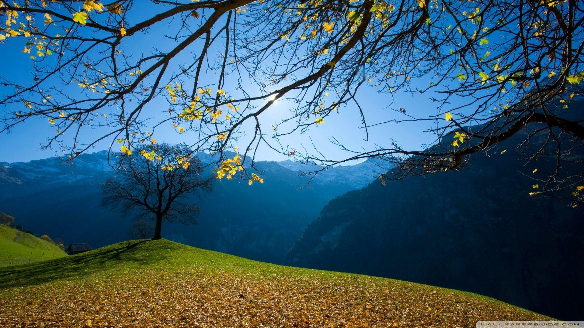 pin nature wallpaper landscape - photo #1
