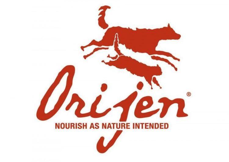 Orijen Dog Food Dog Dog Food Reviews Pet Food Store Kitten Food