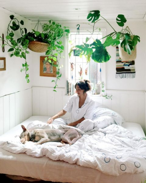 Plant filled bedroom love in pinterest decor and home also rh