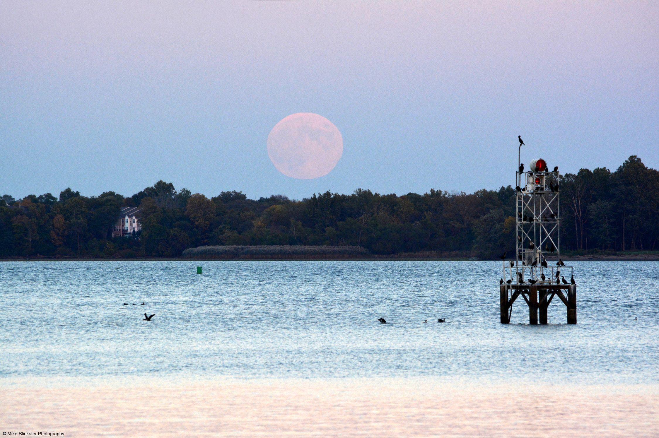 Full Moon on the Rise Over Delaware River