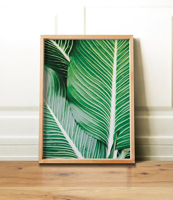 Palm Leaf Print/ Palm Wall Art/ Tropical Palm Print/ Tropical