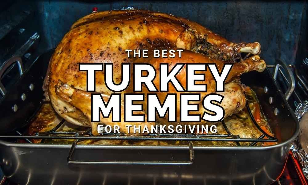 Funny Turkey Memes For Thanksgiving 2020 Funny Turkey Memes Funny Thanksgiving Memes Funny Dad Memes