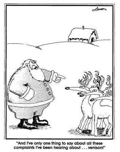 the far side | The far side, Far side cartoons, Christmas humor