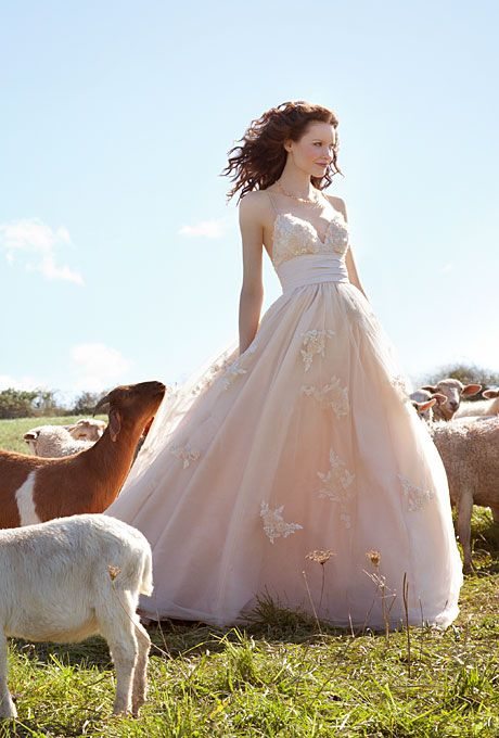 Brides Rustic Wedding Dresses Wtoo Enchanting Champagne Tulle And Taffeta