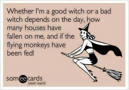 Pin By Toni R Tarna On Everything Witchy Witches Night Out The