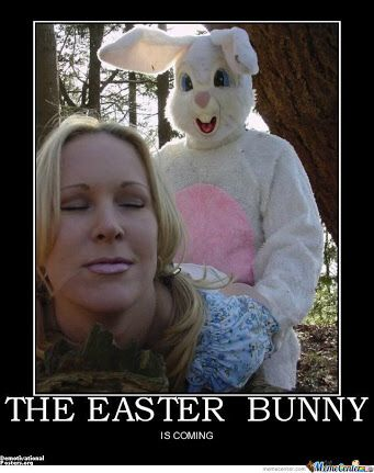 25612283ccf728272163160ffa9be12e easter bunny humour memes pinterest easter bunny, memes and