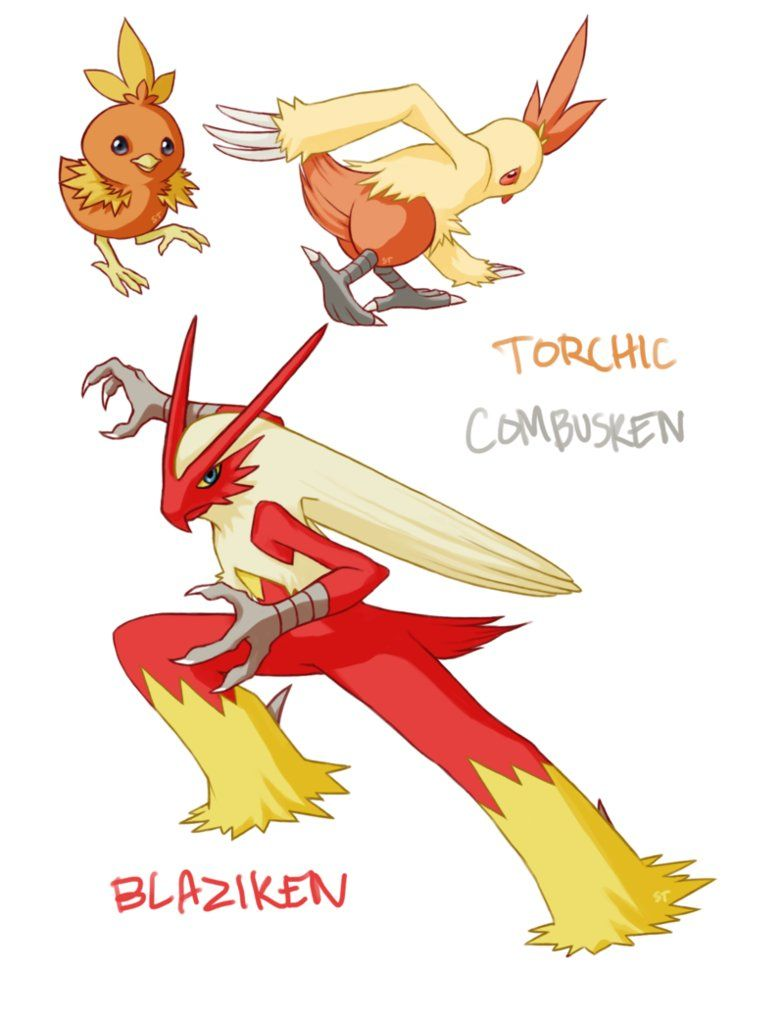 Torchic Combusken Blaziken By Aphose On Deviantart Pokemon Iniciales Mudkip Pikachu Evolution