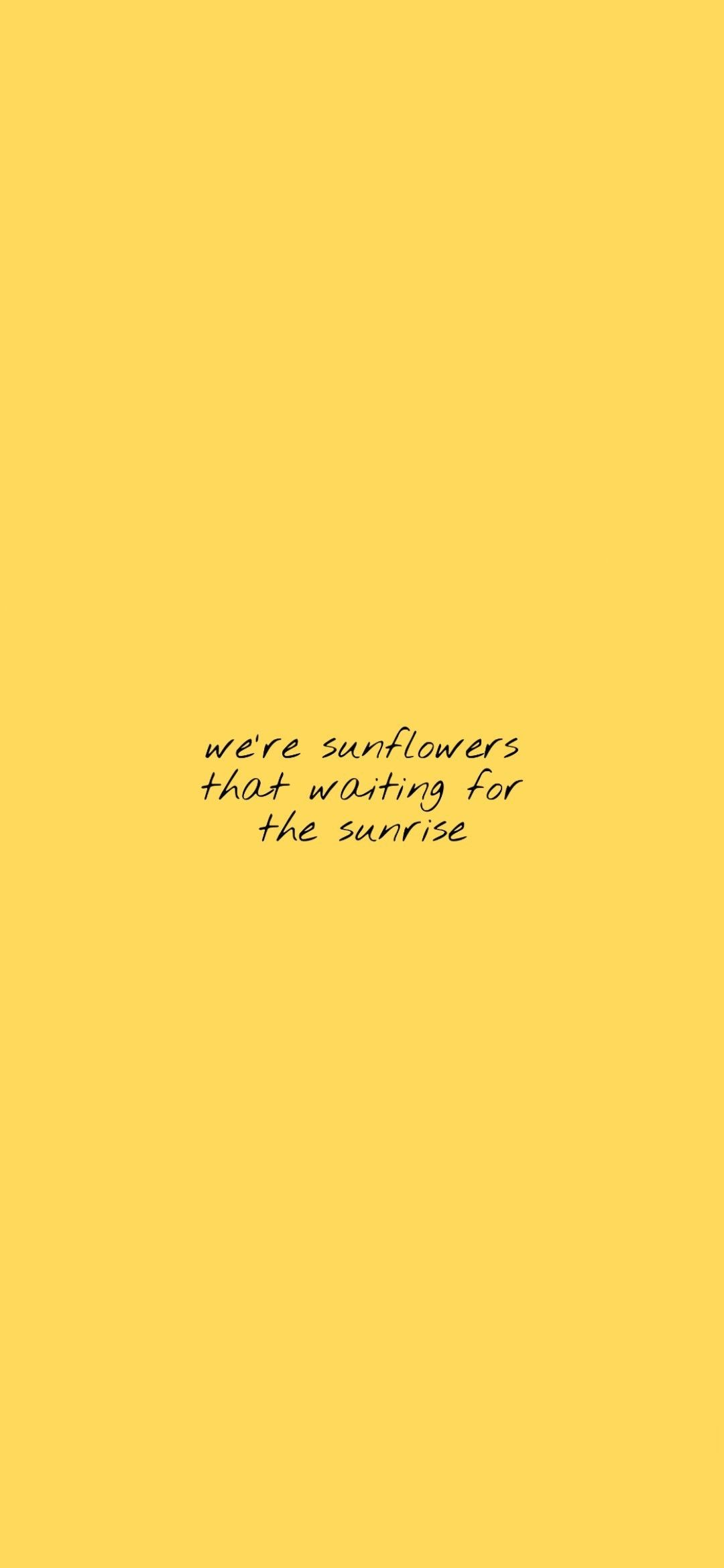 sunflower quotes aesthetic yellow wallpaper