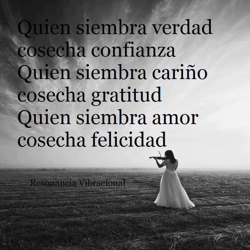 Quien Siembra Amor Cosecha Felicidad Imagenes Con Frases De