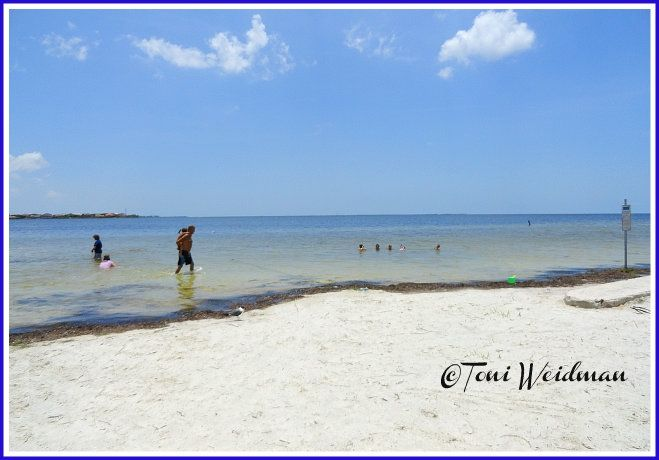 Summer Or Winter Beach Water Clear Blue Sky In New Port Richey Fl