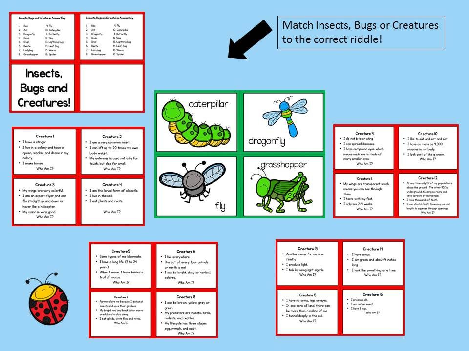 SPRING ACTIVITIES FOR READING! Insects, Bugs, and