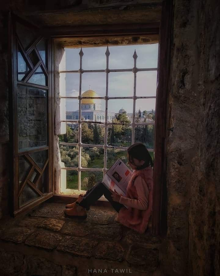 Pin By Seada Husejni On Nature Windows Palestine Jerusalem