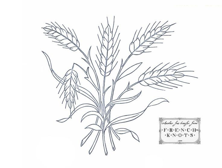 free wheat pattern for paper | Wonderful Wheat Embroidery Transfer Pattern