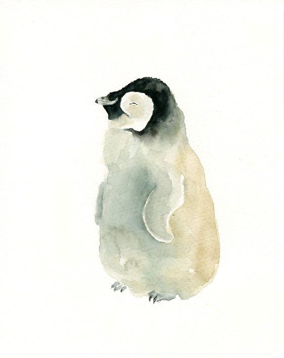 Baby Penguin Original Watercolor Painting 8x10inch By Dimdi