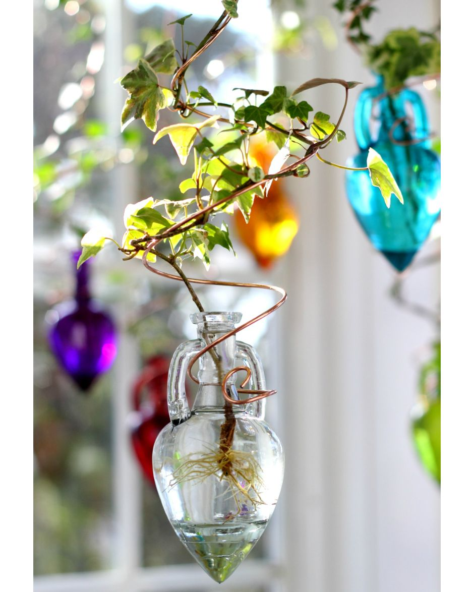 Spiral Hanging Water Garden™, Clear [Live plants included