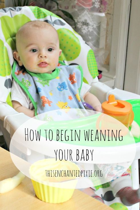 Thinking about weaning? Find out where to begin.