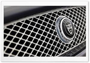 Jaguar again