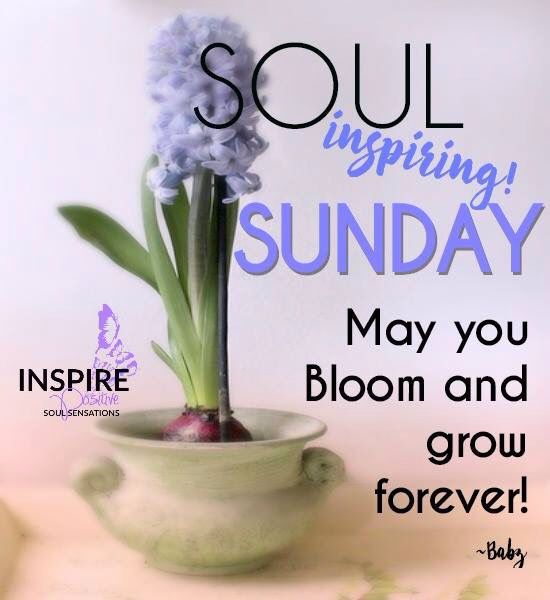Soul Uplifting Quotes: Soul Inspiring Sunday Good Morning Sunday Sunday Quotes