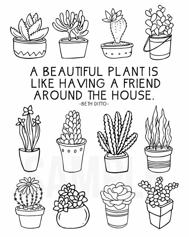 Fun coloring sheet full of succulents for plant lovers