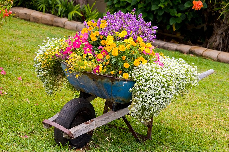 Wonderful idea......old wheelbarrow turned into container gardening, with all kinds of beatuful flowers. I love this, such a stunning scene in the landscape!!