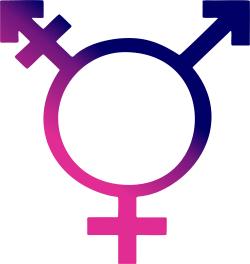12x18 Trans Gender Symbol Gender Neutral Pride Sign Trans Gender Restroom Sign Gender Neutral