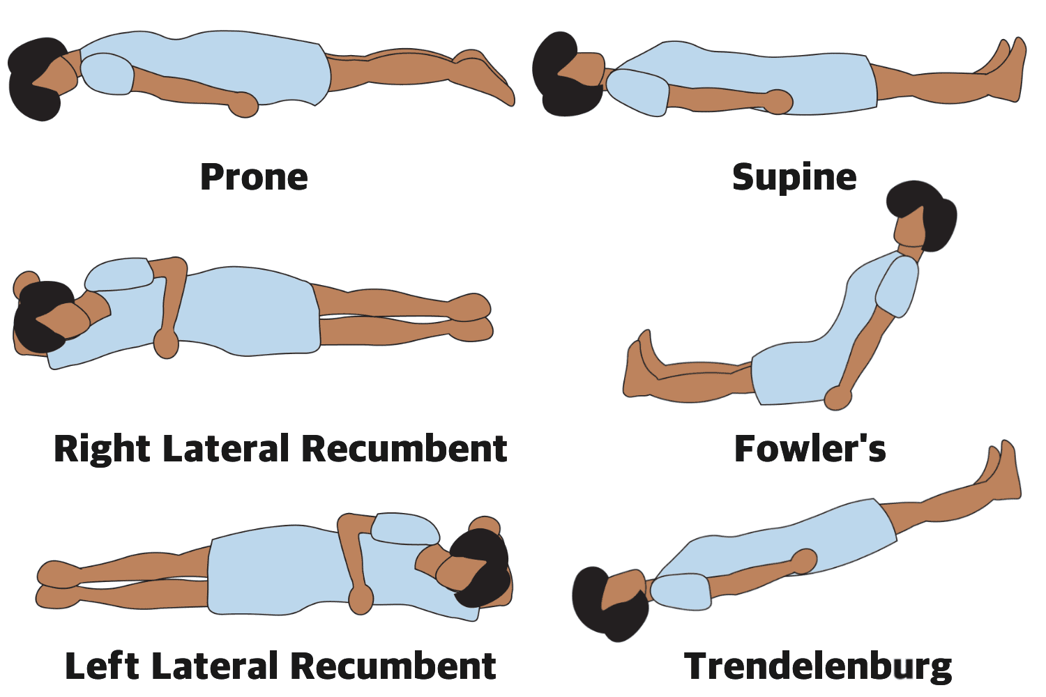 What Is An Anatomical Position An Illustrated Guide