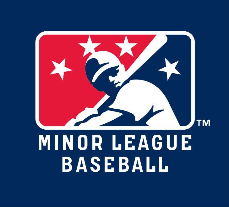 minor league baseball logo - Google Search