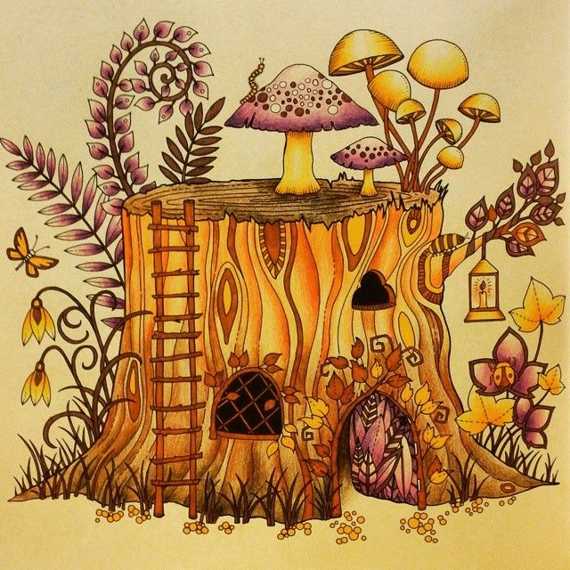 Tree Stumps Adult Coloring Books Happy Planner Mushroom Johanna Basford Enchanted Forest Maryland Book Chance